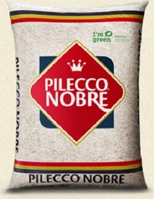 pileco nobre