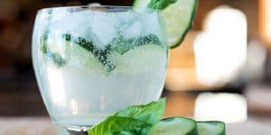 as 8 melhores marcas de gin do mundo